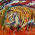 Go Get Them Tiger by Anastasis  Anastasi
