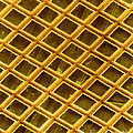 Gold Electron Micrograph Grid by David M. Phillips