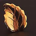 Gold Leaf by Rona Black
