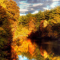 Golden Autumn by Joann Vitali
