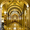 Golden Government by Greg Fortier