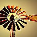 Golden Light Windmill by Marty Koch