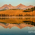 Golden Mountains  Reflection Print by Robert Bales