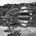 Golden Pagoda in Kyoto Japan Print by David Smith