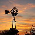 Golden Windmill Silhouette by Robert D  Brozek
