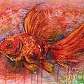 Goldfish by Zaira Dzhaubaeva