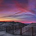 Good Night Cape Cod by Susan Candelario