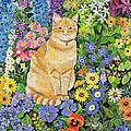 Gordon S Cat by Hilary Jones