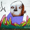 Graffiti Art Curitiba Brazil 17 by Bob Christopher