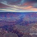 Grand Canyon Dusk Print by Mike  Dawson