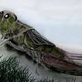 Grasshopper Resting by Cynthia Adams