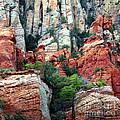 Gray And Orange Sedona Cliff by Carol Groenen