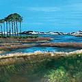 Grayton Beach State Park by Racquel Morgan