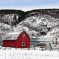 Great Canadian Red Barn In Winter by Peter v Quenter