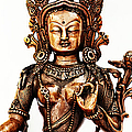 Green Tara Print by Tim Gainey
