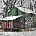 Green Tobacco Barn by Benanne Stiens