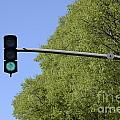 Green Traffic Light By Trees by Sami Sarkis