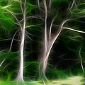 Greenbelt by Wendy J St Christopher