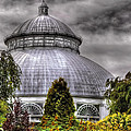 Greenhouse - The Observatory by Mike Savad