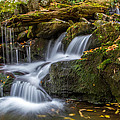 Grotto Falls Great Smoky Mountains Tennessee by Pierre Leclerc Photography