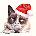 Grumpy Cat as Santa Print by Olga Shvartsur