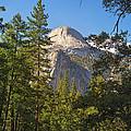 Half Dome Yosemite by Jane Rix
