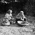 Hand Thrown Pottery by Munir Alawi