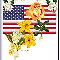 Happy Birthday America 2013 Print by Anne Norskog