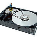 Hard Drive Backup by Olivier Le Queinec
