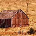 Harvest Barn by Mary Jo Allen