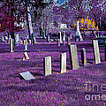 Haunted Cemetery by Alys Caviness-Gober