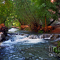 Havasu Creek by Kathy McClure