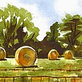 Hay Bales At Noontime  by Kip DeVore