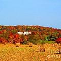 Hay Bales In A Quaker Fall by Matthew Peek