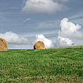 Hay Bales by Steven  Michael