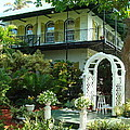 Hemingway House by Kay Gilley