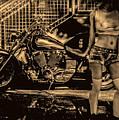 Her Bike by Bob Orsillo