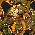 Hiding Bear by Jenn Cunningham
