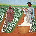 High Cotton by Fred Gardner