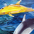 High Tech Dolphins by Thomas J Herring