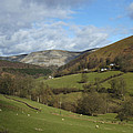 Highlands - Scotland by Mike McGlothlen