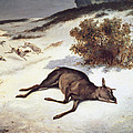 Hind Forced Down In The Snow by Gustave Courbet