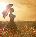 Historical Woman With Parasol In A Meadow At Sunset by Lee Avison