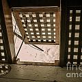 Hms Bounty Hatchway Below Deck by Patricia Trudell