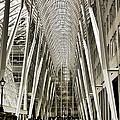 Hockey Hall Of Fame - Galleria by Carson Buzdegan