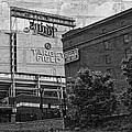 Home Of The Minnesota Twins by Susan Stone