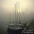 Honfleur Harbour In Fog. Calvados. Normandy by Bernard Jaubert