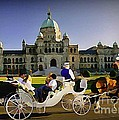 Horse and Carriage in Victoria British Columbia
