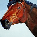 Horse Head by Mike Jory