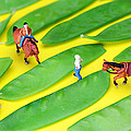 Horse Riding On Snow Peas Little People On Food by Paul Ge